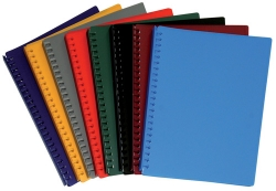 Display Book Red 20 Sleeves